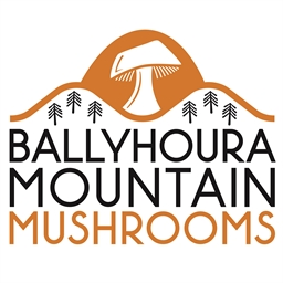 Ballyhoura Mountain Mushrooms